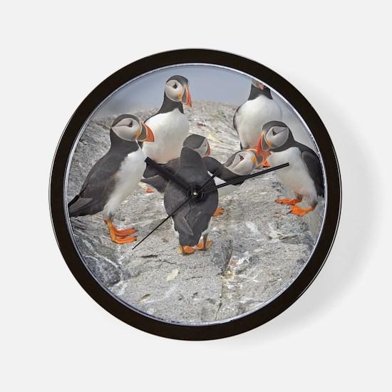 circle of puffins Wall Clock