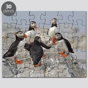 circle of puffins Puzzle