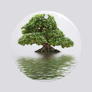 Ficus bonsai with water reflection Round Ornament