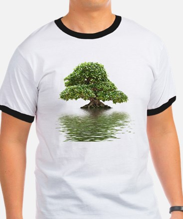 Ficus bonsai with water reflection T