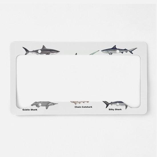 Shark Types License Plate Holder