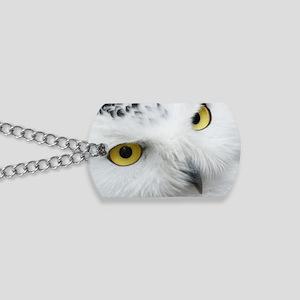 white snowy owl face closeup Dog Tags