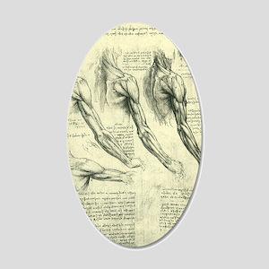 Male Anatomy by Leonardo da  35x21 Oval Wall Decal