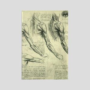 Male Anatomy by Leonardo da Vinci Rectangle Magnet