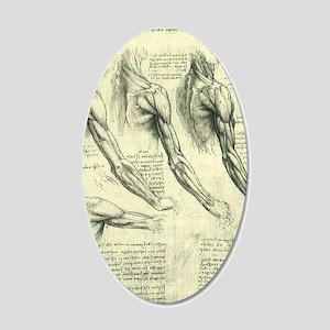 Male Anatomy by Leonardo da  20x12 Oval Wall Decal