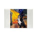 Cafe & Bernese Rectangle Magnet (10 pack)
