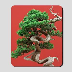 Juniper bonsai Mousepad