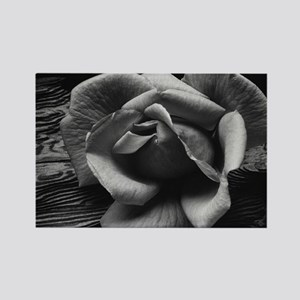 Ansel Adams Rose And Driftwood Rectangle Magnet
