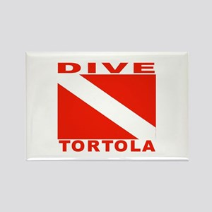 Dive Tortola Rectangle Magnet