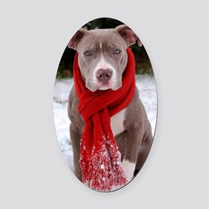 Holiday Pit Bull Oval Car Magnet