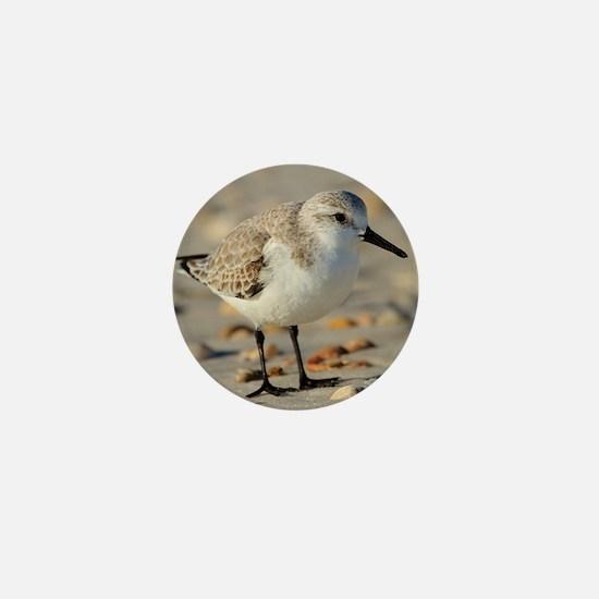 Sand Piper and Seashells Mini Button