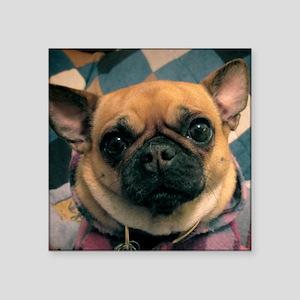 "Chug Dog Dunkie Square Sticker 3"" x 3"""