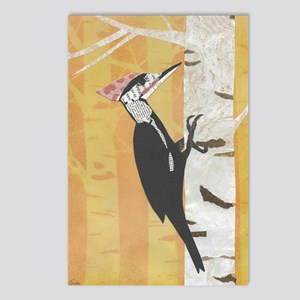 Pileated Woodpecker Postcards (Package of 8)