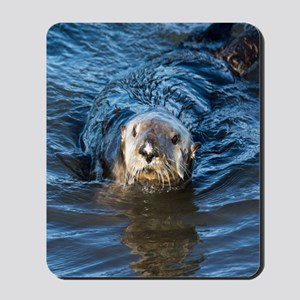 Alaska Sea Otter Mousepad