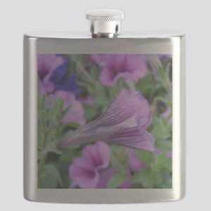 petunia closed Flask