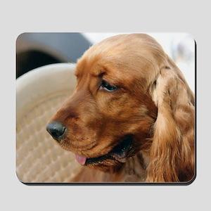Cocker Spaniel dog Mousepad
