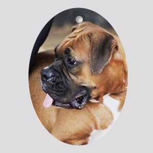 Boxer Dog Oval Ornament