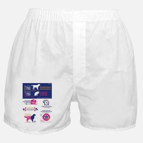 Spay Neuter Infograph Boxer Shorts