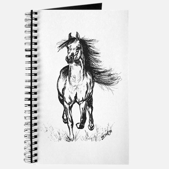 Runner Arabian Horse Journal