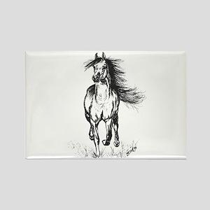 Runner Arabian Horse Rectangle Magnet