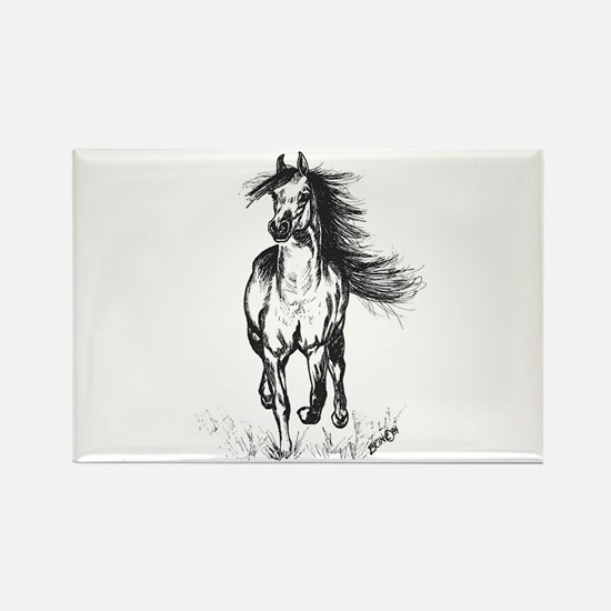 Runner Arabian Horse Rectangle Magnet