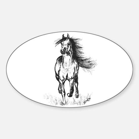 Runner Arabian Horse Sticker (Oval)