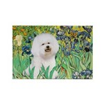 Irises and Bichon Rectangle Magnet