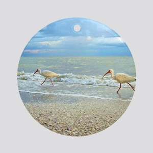 Sanibel Ibis Birds Strut Their stuf Round Ornament