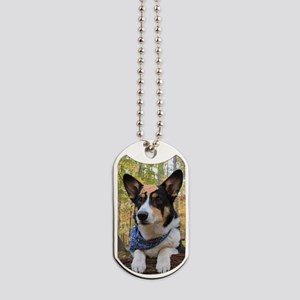 Explorer Dog Tags