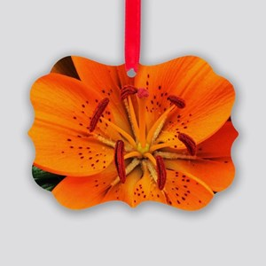 Tiger Lily Extreme Close Up Picture Ornament