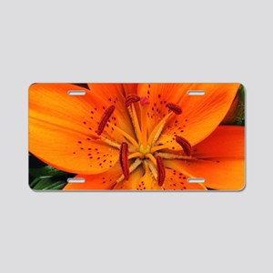 Tiger Lily Extreme Close Up Aluminum License Plate