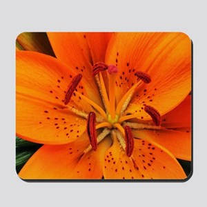 Tiger Lily Extreme Close Up Mousepad