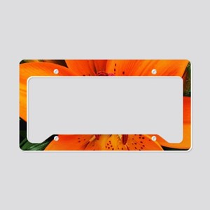 Tiger Lily Extreme Close Up License Plate Holder