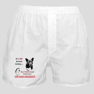 Akita BSL2 Boxer Shorts