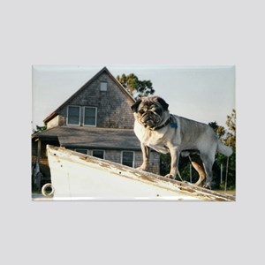 Pug on a boat Rectangle Magnet