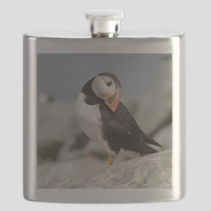647_h_f  Gelpad Flask