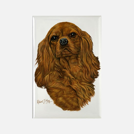 Cavalier Ruby Rectangle Magnet