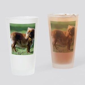English Toy Spaniel Dog Portrait Drinking Glass