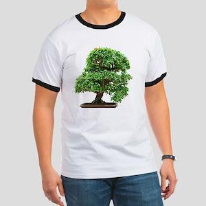 Punica Granatum bonsai tree Ringer T