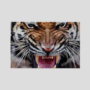 Tigers, Big Cat Football Rectangle Magnet