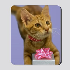 Tabby Kitten with Gift Birthday Mousepad