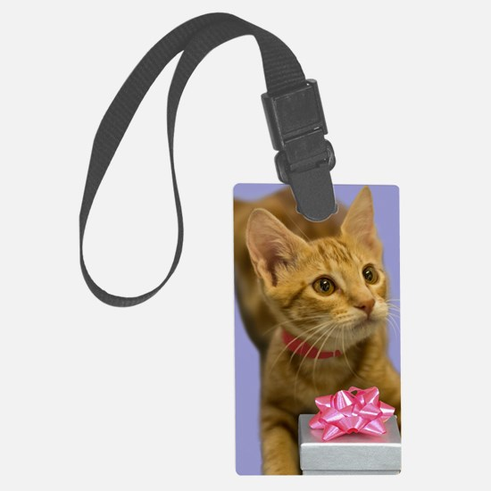 Tabby Kitten with Gift Birthday Luggage Tag