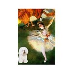 Ballet Dancer & Bichon Rectangle Magnet