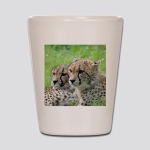 Cheetah009 Shot Glass