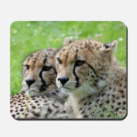 Cheetah009 Mousepad