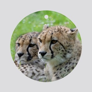 Cheetah009 Round Ornament