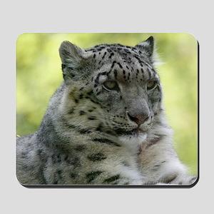Leopard006 Mousepad