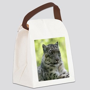 Leopard006 Canvas Lunch Bag