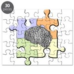 Brain Maze/Puzzle Puzzle