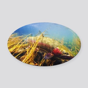 Rainbow Trout - Fly Fishing Oval Car Magnet